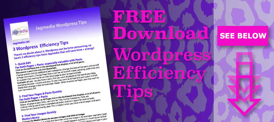 Jagmedia Free Download Wordpress Tips
