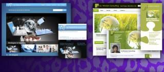jagmedia-wordpress-website-design-branding-venice-beach-900x400