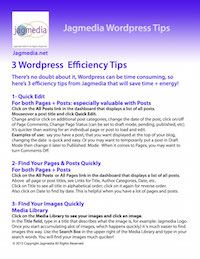 Jagmedia-Wordpress-Tips-preview