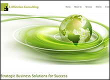 EJ Winston Consulting