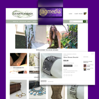 Ecommerce-Wordpress-Jagmedia-Website Design Santa Monica